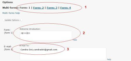 option contact form
